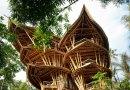Kobieta uciekła z Nowego Jorku, rzuciła świetną pracę i zbudowała magiczny dom w Indonezji