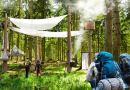 Human Forest – ten hotel nie ma ścian i jest w środku lasu