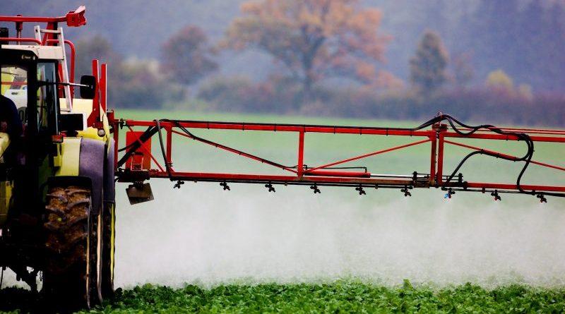 Porażka Monsanto w Sądzie Najwyższym w USA.