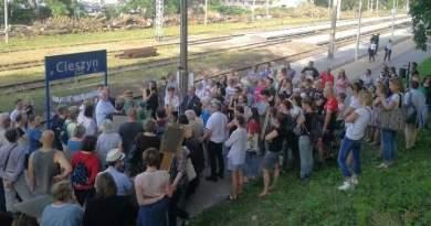 PKP wstrzymuje wycinkę drzew w Cieszynie