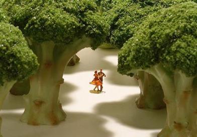 Codziennie już od 5 lat japoński artysta tworzy zabawne miniaturowe dioramy