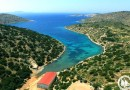 Pierwsze na świecie sanktuarium dla delfinów uratowanych z niewoli powstało na greckiej wyspie Lipsi