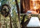 Przenocuj w szyszce zawieszonej pośród drzew