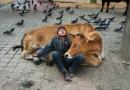 30 fotografii przedstawiających relacje między zwierzętami a ludźmi