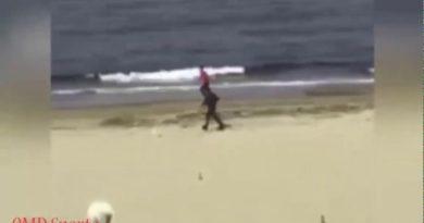 Nieudana interwencja na plaży. Hit internetu!
