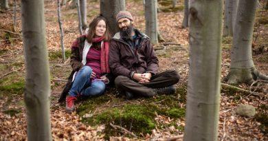 Udało się! Pierwsza w Polsce Strefa Wolnej Ziemi będzie wolna od wycinki drzew i polowań na zwierzęta