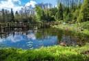 Niezwykłe miejsce pod Przemyślem. Arboretum w Bolestraszycach