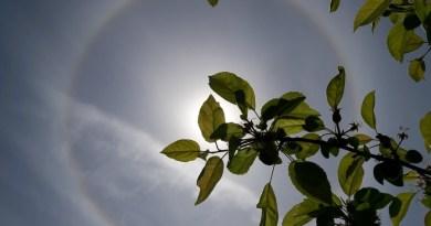 Niezwykłe zjawisko nad Polską. Tęczowy pierścień wokół słońca