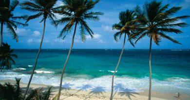 Co powiesz na błękitne niebo i piaszczyste plaże na Barbadosie przez rok? Tamtejszy rząd przygotowuje propozycję dla wszystkich cyfrowych nomadów