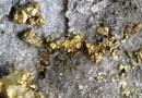 Żyła złota odkryta pod polską wsią. Ministerstwo informuje nawet o 5000 ton rudy