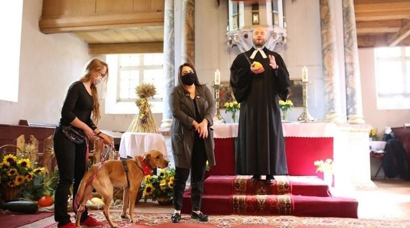 Podczas mszy w Łęgutach proboszcz przedstawił bezdomnego psa do adopcji