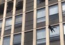 Kot wyskoczył z 5. piętra płonącego budynku