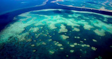 Takiego odkrycia nie było od 120 lat. Zmieni mapę podwodnego świata
