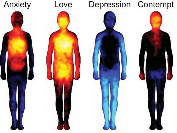 kod emocji