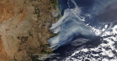 Na dymie z Australijskich pożarów urosły oceaniczne glony, które pochłaniają tony dwutlenku węgla
