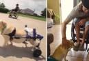 Michael – mężczyzna, który znalazł i uratował niepełnosprawnego psa