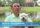 """66-latek uratował swojego psa z paszczy aligatora. Krzycząc: """"Nie dostaniesz jej!"""""""