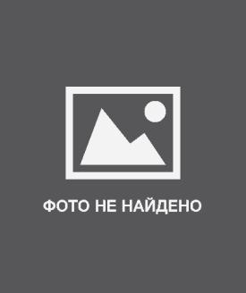 Бизнес-идеи: Чистка ковров. Описание, преимущества и недостатки. Реализация. Дополнительная информация. Фото
