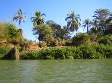 Delta Mekongu (5)