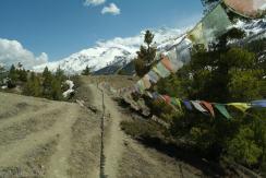 Annapurna Circut 2013 (45)