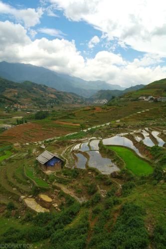 Tarasy ryzowe wokol Sapy Wietnam (13)