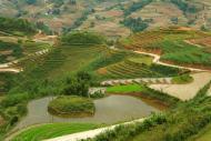 Tarasy ryzowe wokol Sapy Wietnam (3)