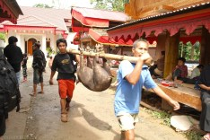 Tana Toraja Ceremonia pogrzebowa_Indonezja (4)