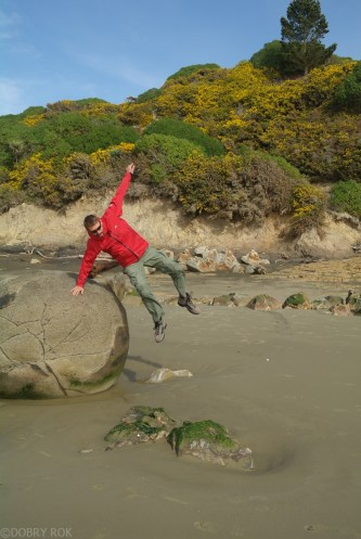 Wybrzeze Otago Moeraki Boulders (14)