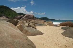 Trinidane Brazylia (6)