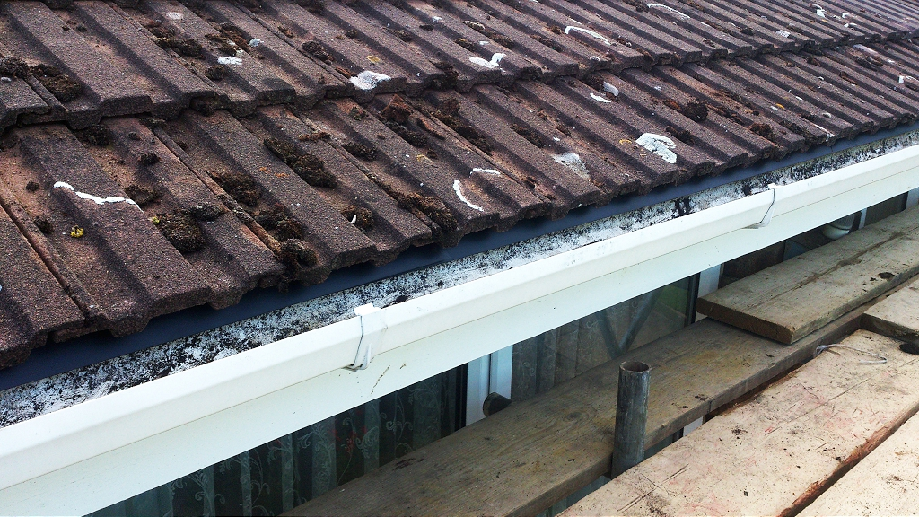 Roof Eave Repair Ds765 Dobson Amp Son Ltd