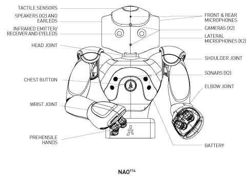 Robot version and Body Type — NAO Software 1.14.5