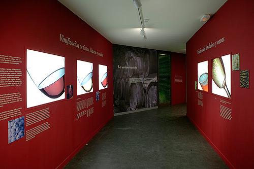 museo_sentidos1
