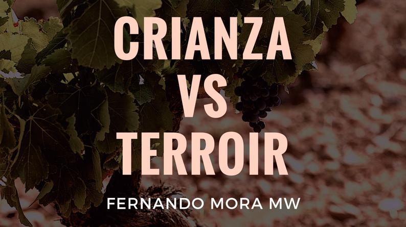Crianza VS Terroir con Fernando Mora Master Wine