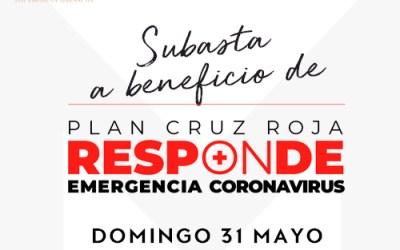 Subasta a beneficio de Plan Cruz Roja Responde Emergencia Coronavirus