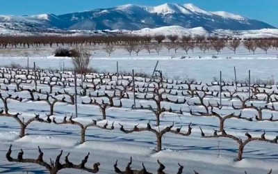 Snow in Campo de Borja
