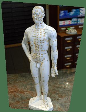Diagnosis Model