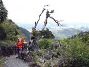 Hiking Rangiwahia.