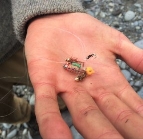 Precious fishing flies found in the river.