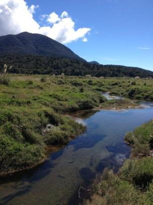 The scenic Haast tokoeka kiwi sanctuary boasts some steep hills. Photographer: Sarah Nason.