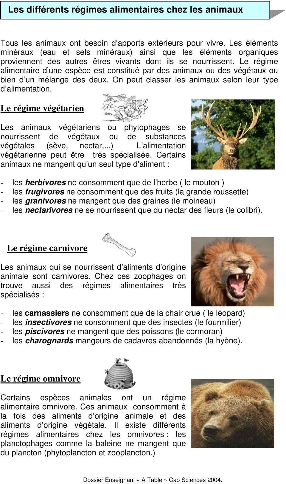 Les Régimes Alimentaires Des Animaux : régimes, alimentaires, animaux, Régimes, Alimentaires, Animaux., Téléchargement, Gratuit