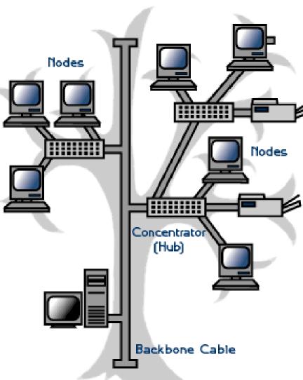 Gambar Topologi Jaringan Bus : gambar, topologi, jaringan, MODUL, Praktikkum, Topologi, Jaringan, Dengan, Packet, Tracer, Download, Gratis