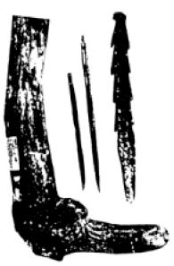 Pengertian Kebudayaan Ngandong : pengertian, kebudayaan, ngandong, Kebudayaan, Ngandong., Daerah, Sekitar, Ngandong, Sidorejo, Dekat, Madiun,, Timur,, Ditemukan, Download
