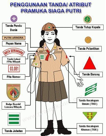 Apa Saja Tanda Pengenal Yang Dimiliki Siti Dan Lani : tanda, pengenal, dimiliki, KUMPULAN, MATERI, PRAMUKA, PENGGALANG, Download, Gratis