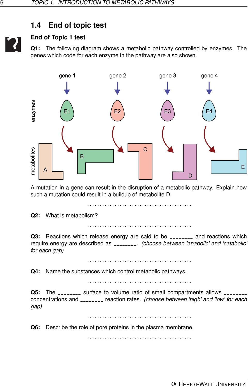 hight resolution of explain how such a mutation could result in a buildup of metabolite d q2