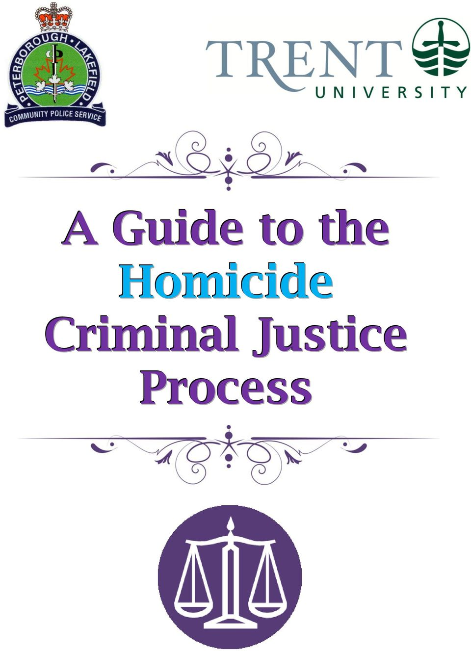 hight resolution of 2 p a g e 2 table of contents homicide case flowchart 3 overview of homicide trial 4 location of local court houses 5 general courtroom diagram 6