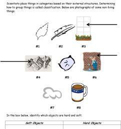 Biological Classification Worksheet - PDF Free Download [ 1140 x 960 Pixel ]