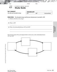 Cells And Energy Worksheet.htmlcells And Energy Worksheet ...