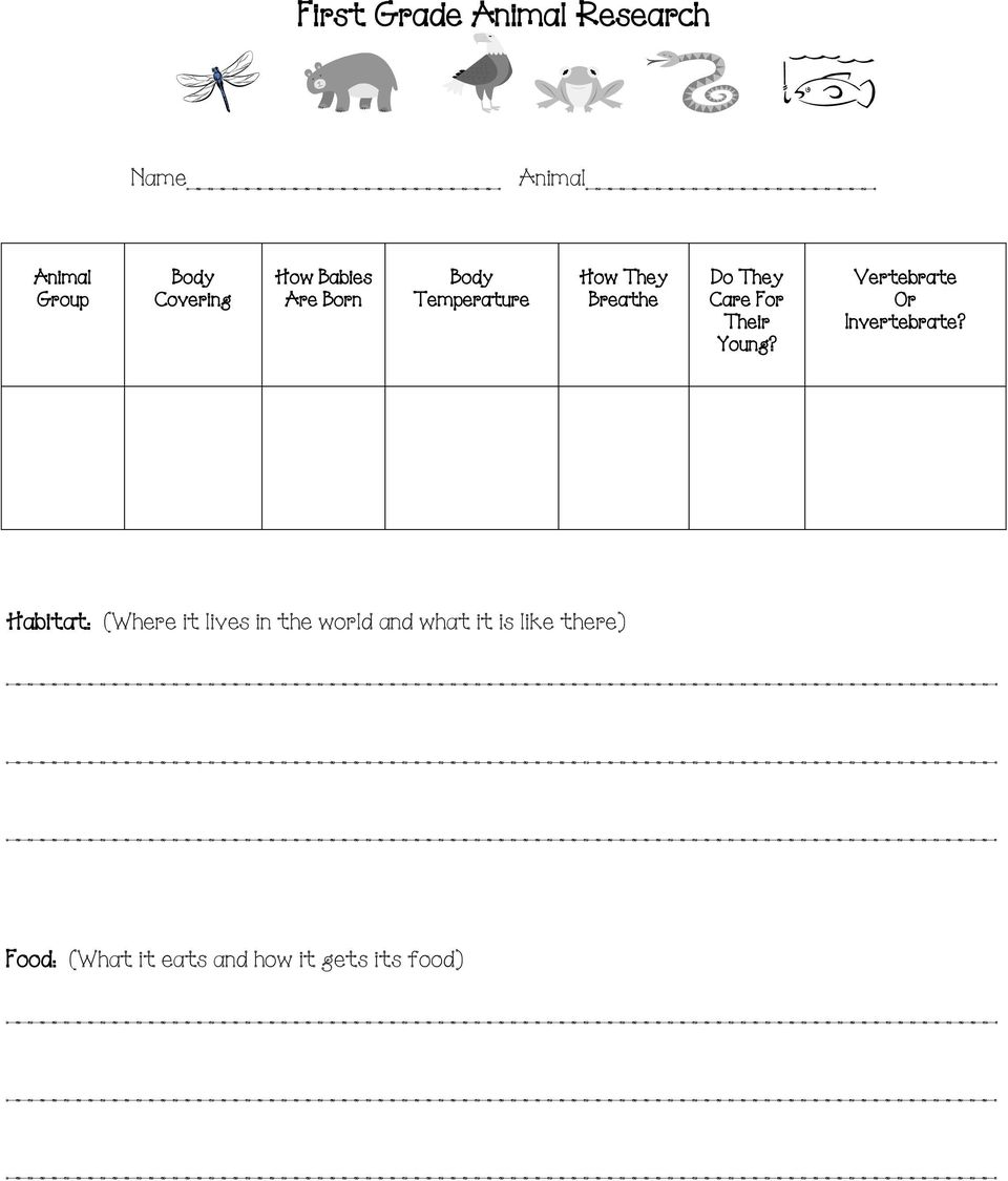 medium resolution of First Grade Animal Research Project - PDF Free Download