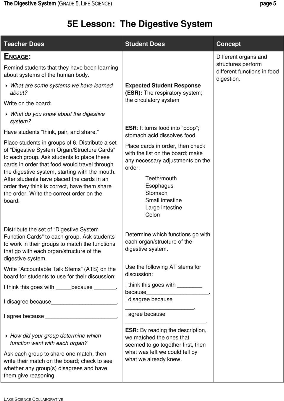 hight resolution of The Digestive System Grade 5 - PDF Free Download