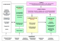 Selbstwirksamkeit und Klassenfhrung - PDF